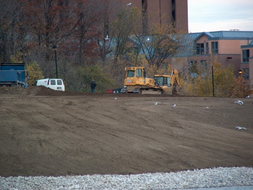 The bulldozers are taking a rest in re-building Stong Pond in October 2007. Note the ring-billed gulls who are feasting on the exposed goodies unearthed by the machines.